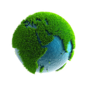 Grass Covered Earth